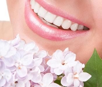 Dr. Palmer on Holistic Dentistry Holistic Dental