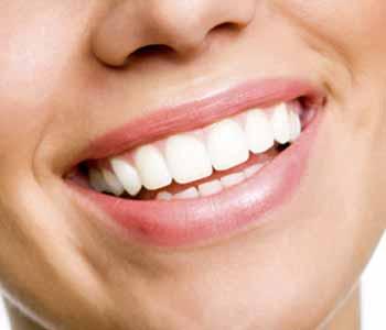 Dr. Palmer Dental Implants Implant Dentistry