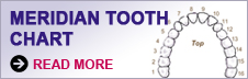 Dentist Greenville - Meridian Tooth Chart