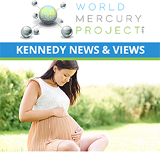 Protecting the Innocent: Dental Amalgam Mercury and Risks to Fetuses, Infants and Children Eblast